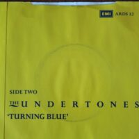 Undertones, The – Got To Have You Back (Vinyl Single)