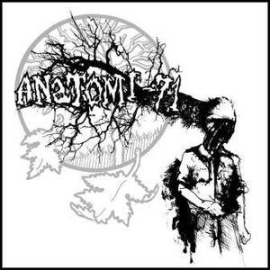Anatomi – 71 / Radioskugga – Split (Vinyl 7″)