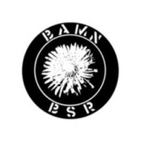 Bamn / Black Star Rising – Split (Vinyl LP)