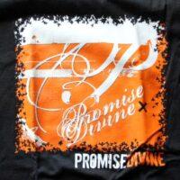 Promise Divine – Orange (T-Shirt)