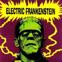 Electric Frankenstein ‎– I'm Not Your (Nothing) (Color Vinyl Single)