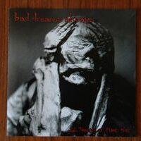 Bad Dreams Always – 22 Tracks Of Pure Hate (CD)