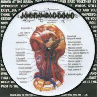 Jenny Piccolo – Lowest Common Denominator (Picture Vinyl Single)