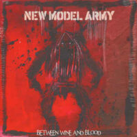 New Model Army – Between Wine And Blood (2 x Vinyl LP)