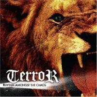 Terror – Rhythm Amongst The Chaos (Color Vinyl Single)