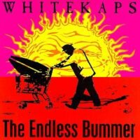 White Kaps – The Endless Bummer (Vinyl LP)