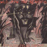 Wild, Raw And Beautiful – V/A (Brutal Personal,Mögel,Coca Carola, Vinyl LP)