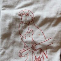 Saves The Day – Parrot (Vintage/Used T-Shirt)