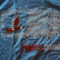 Promise Divine – Bird (T-S)