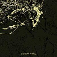 Ursut – Dårarnas Paradis (Vinyl LP)