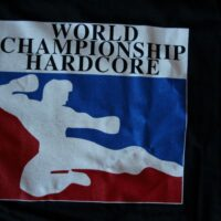 Walls Of Jericho – Champion (Girlie/Youth-T)