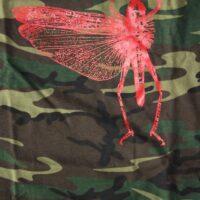 Locust, The – Bug (T-S)