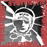 Adam Nilsson & Insatsstryrkan – Systemet E Problemet (Vinyl LP)