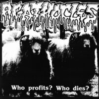 Morbid Organs Mutilation / Agathocles – Split (Vinyl Single)