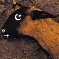 Ministry – Animositisomina (2 x Color Vinyl)