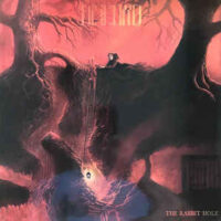 Great Discord, The – The Rabbit Hole (Vinyl LP)