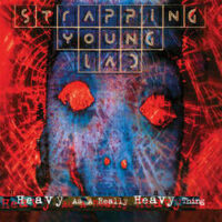 Strapping Young Lad – Heavy As A Really Heavy Thing (2 x Color Vinyl LP)