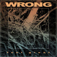 Wrong – Feel Great (Vinyl LP)