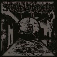 Svaveldioxid – Dödsögonblick (Vinyl LP)
