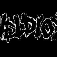 Svaveldioxid – Logo (Cloth Patch)